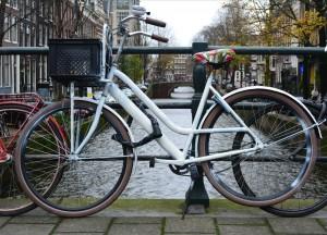 rower holender